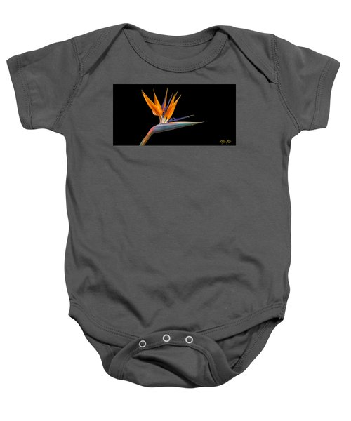 Bird Of Paradise Flower On Black Baby Onesie