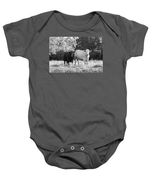 Baby Onesie featuring the photograph Black And White Cows by Vincent Bonafede