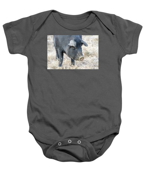 Baby Onesie featuring the photograph Black Pig Close-up by James BO Insogna