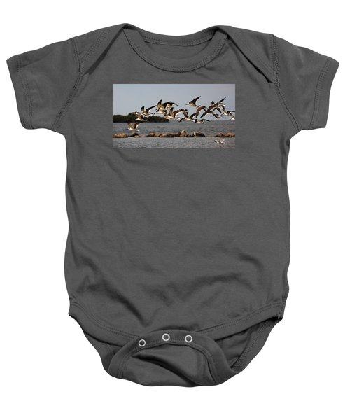 Black Skimmers In Flight Baby Onesie