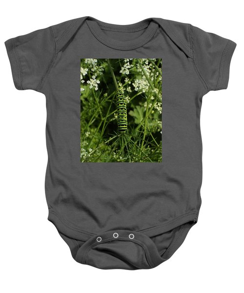 Baby Onesie featuring the painting Black Swallowtail Butteryfly Caterpillar by Chholing Taha