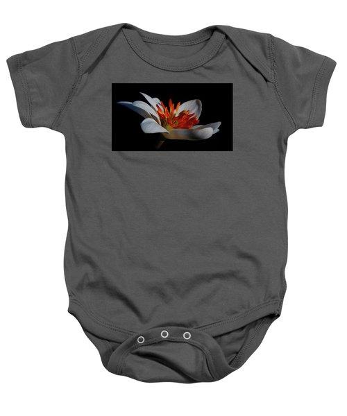 Bloodroot Art Baby Onesie