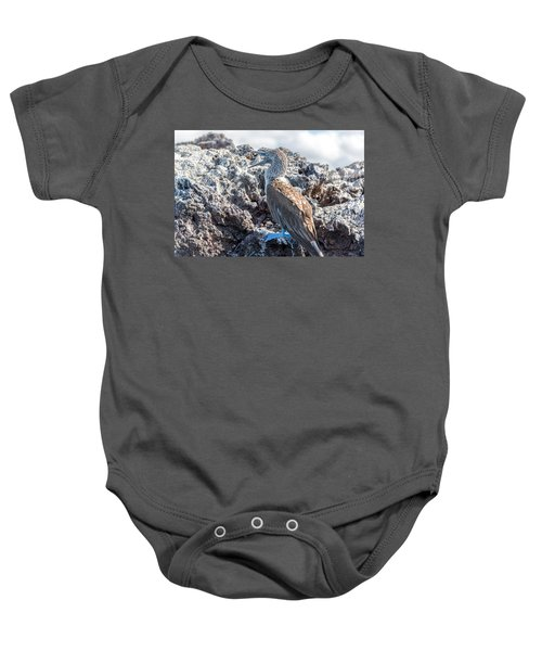 Blue Footed Booby Baby Onesie by Jess Kraft