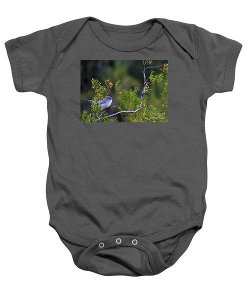 Blue-gray Gnatcatcher  Baby Onesie