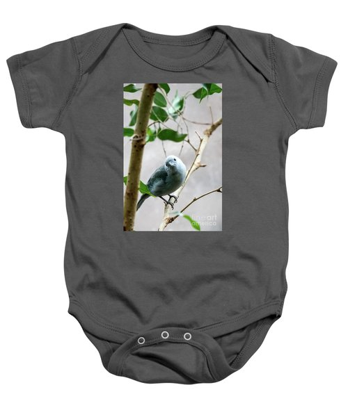 Blue-grey Tanager Baby Onesie