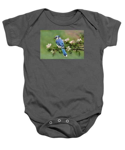 Blue Jay And Blossoms Baby Onesie