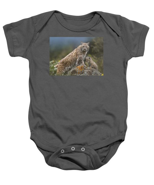 Bobcat Mother And Kittens North America Baby Onesie