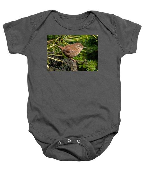 British Wren Baby Onesie