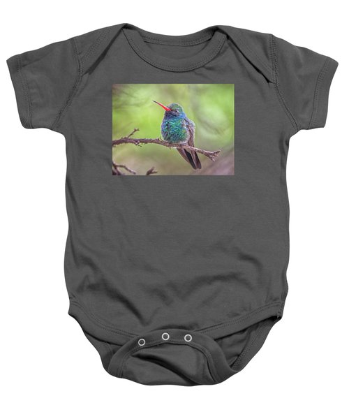 Broad-billed Hummingbird 3652 Baby Onesie
