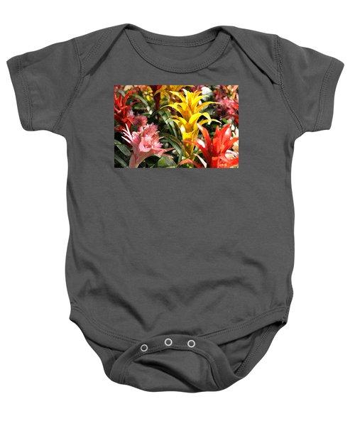 Bromeliads Baby Onesie