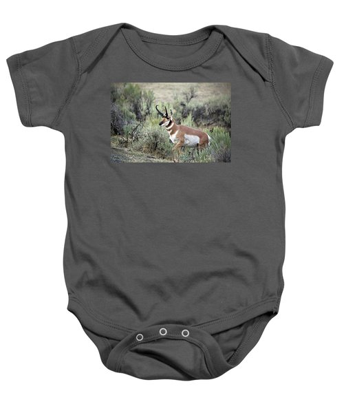 Pronghorn Buck Baby Onesie