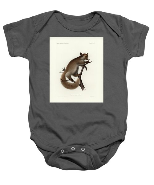 Brown Greater Galago Or Thick-tailed Bushbaby Baby Onesie