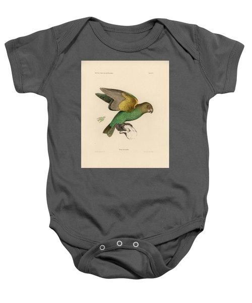Brown-headed Parrot, Piocephalus Cryptoxanthus Baby Onesie