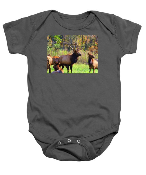 Buffalo River Elk Baby Onesie