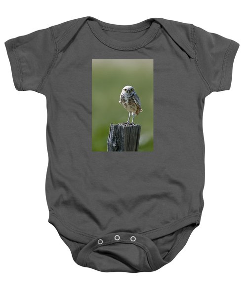 Baby Onesie featuring the photograph Burrowing Owl by Gary Lengyel