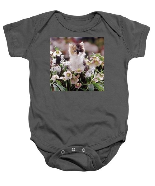 Calico And Scillas Baby Onesie