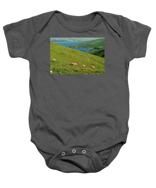 Baby Onesie featuring the photograph California Elk by Renee Hong
