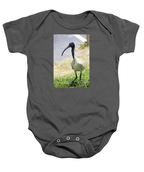 Carpark Ibis Baby Onesie by Jorgo Photography - Wall Art Gallery