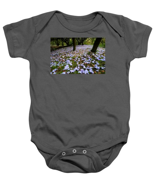 Carpet Of Petals Baby Onesie