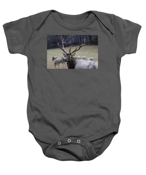 Cataloochee Elk Baby Onesie