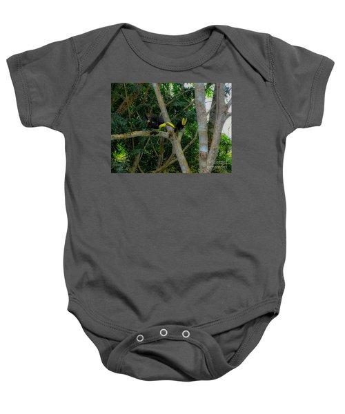 Chestnut-mandibled Toucans Baby Onesie