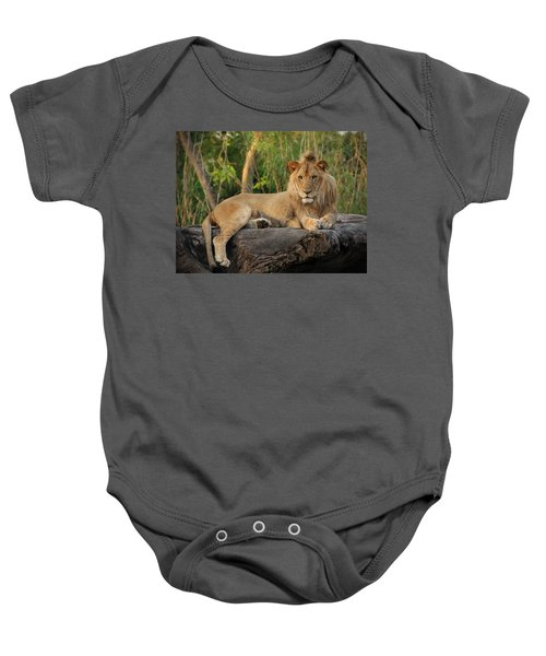Classic Young Male Baby Onesie