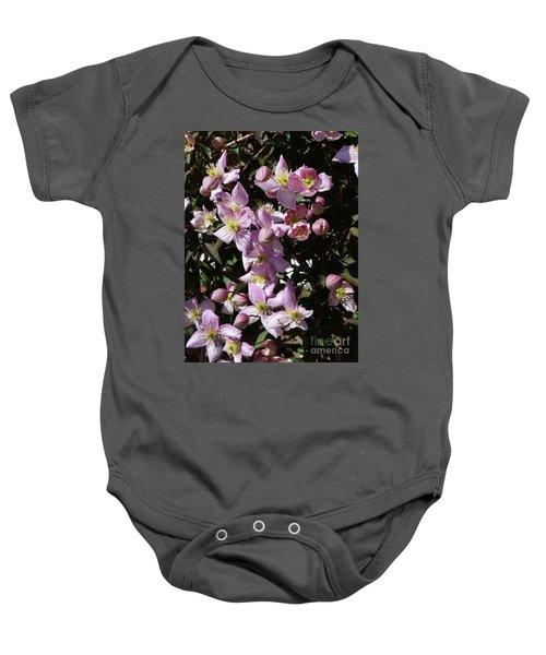 Clematis Montana  In Full Bloom Baby Onesie