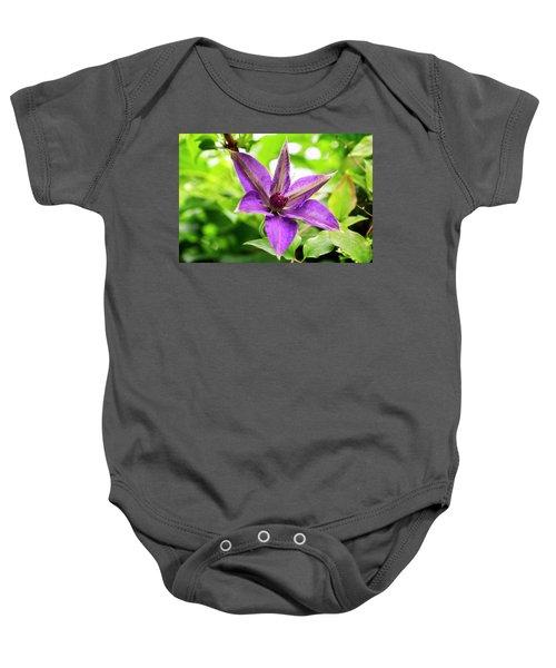 Clematis Vine II Baby Onesie