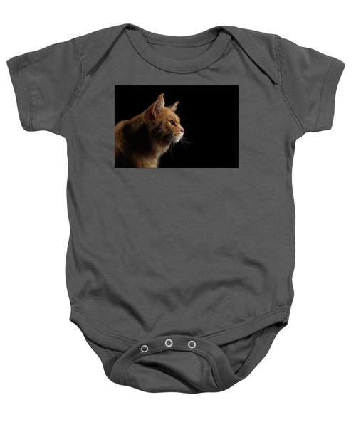 Close-up Portrait Ginger Maine Coon Cat Isolated On Black Background Baby Onesie
