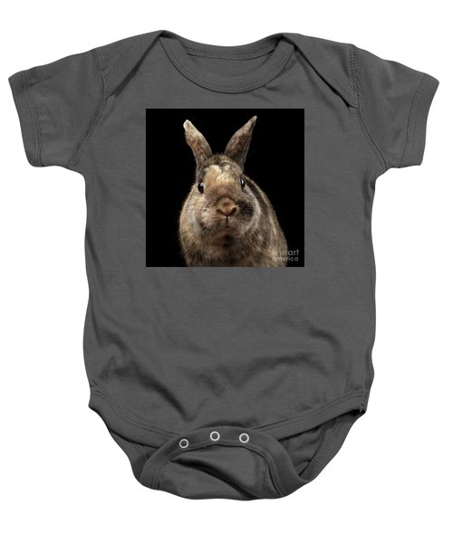 Closeup Funny Little Rabbit, Brown Fur, Isolated On Black Backgr Baby Onesie