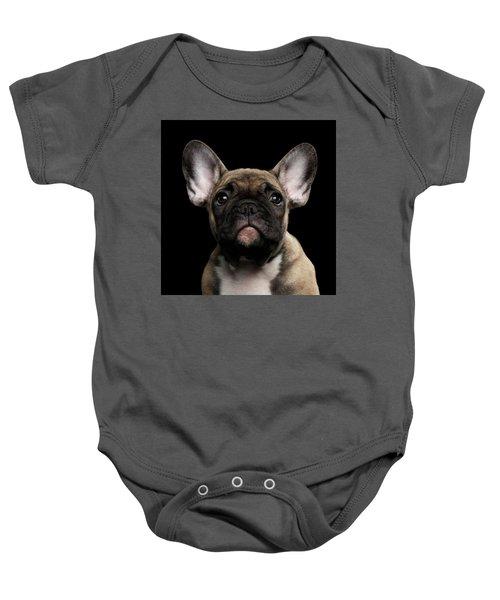 Closeup Portrait French Bulldog Puppy, Cute Looking In Camera Baby Onesie