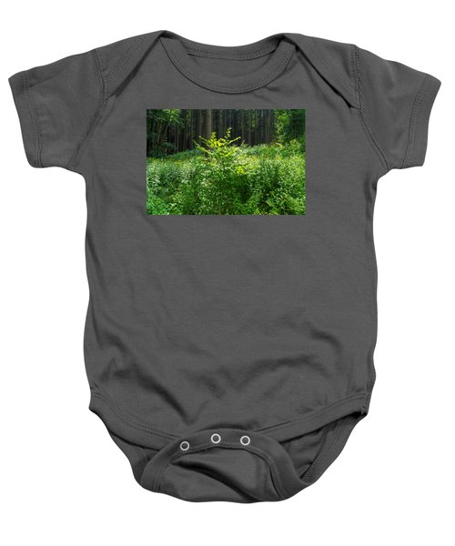 Colors Of A Forest In Vogelsberg Baby Onesie