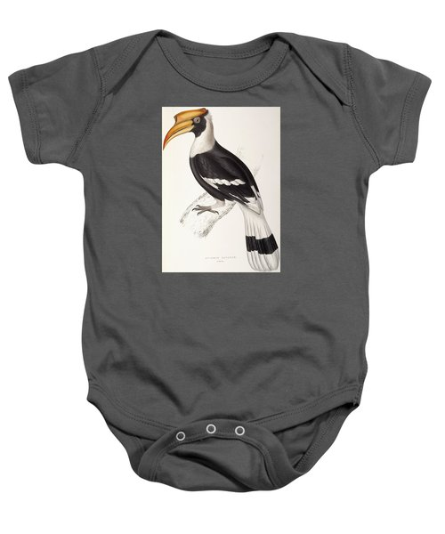Concave Hornbill Baby Onesie by John Gould