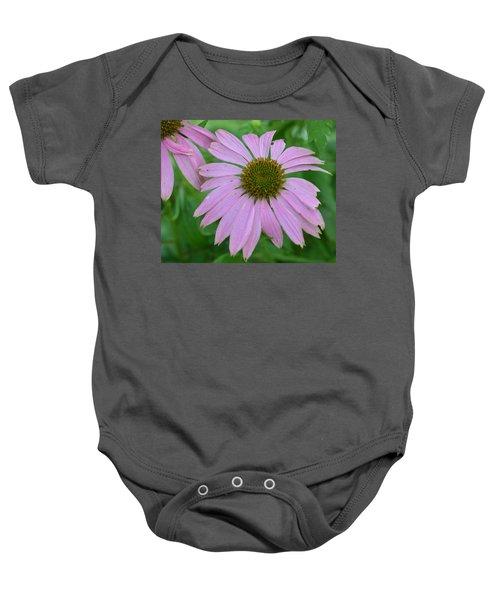 Coneflower Baby Onesie