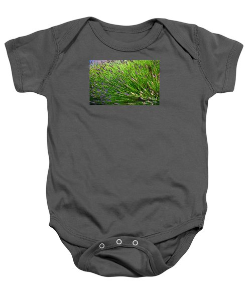 Country Lavender Vi Baby Onesie