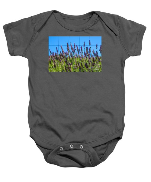 Country Lavender Vii Baby Onesie