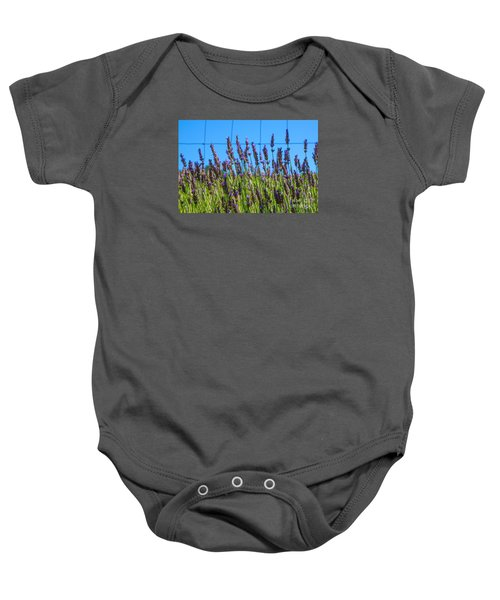 Country Lavender Vii Baby Onesie