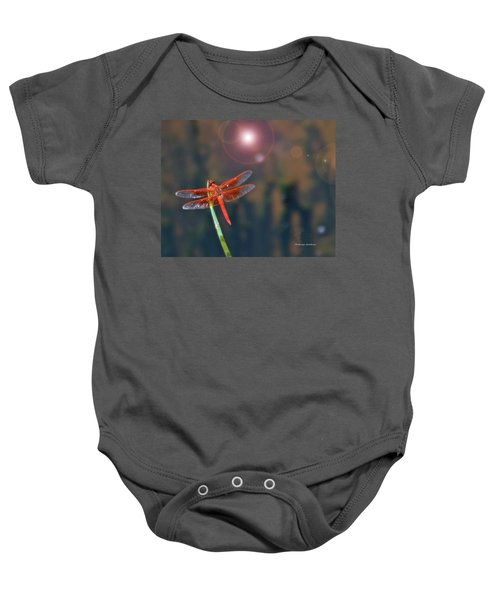 Crackerjack Dragonfly Baby Onesie