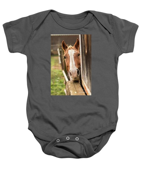 Curious Horse Baby Onesie
