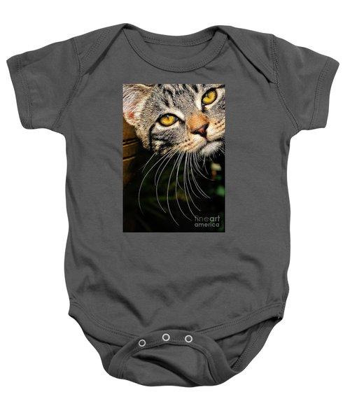 Curious Kitten Baby Onesie