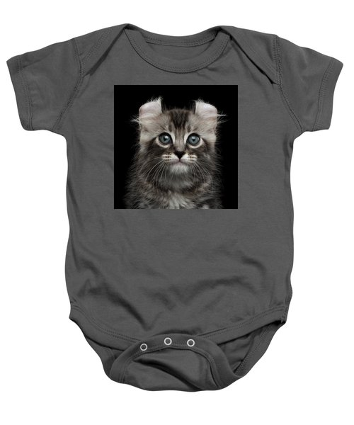 Cute American Curl Kitten With Twisted Ears Isolated Black Background Baby Onesie