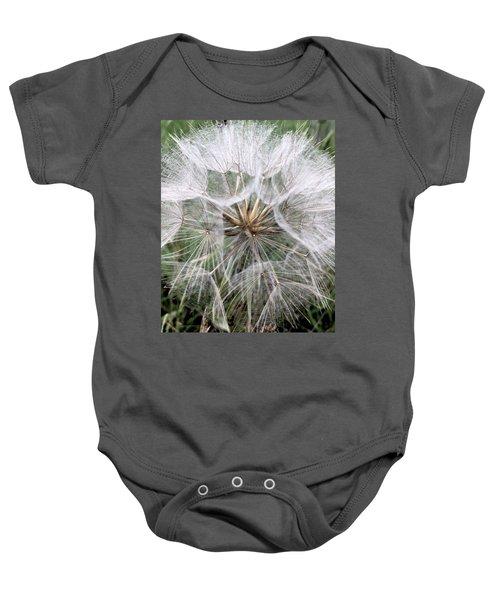Dandelion Seed Head  Baby Onesie by Kathy Spall