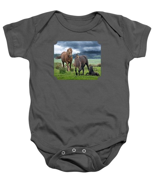 Dartmoor Ponies Baby Onesie