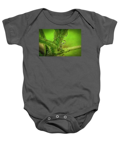 Dew Drop Closeup Baby Onesie