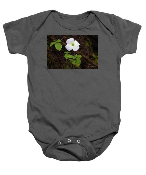 Baby Onesie featuring the photograph Dogwood by Vincent Bonafede