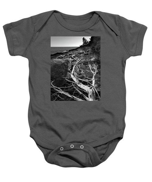 Driftwood Tree, La Verna Preserve, Bristol, Maine  -20999-30003 Baby Onesie