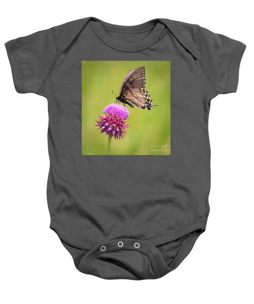 Eastern Tiger Swallowtail Dark Form  Baby Onesie