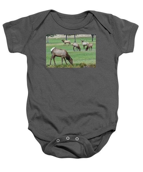Elk On Golf Course Estes Park Colorado Baby Onesie