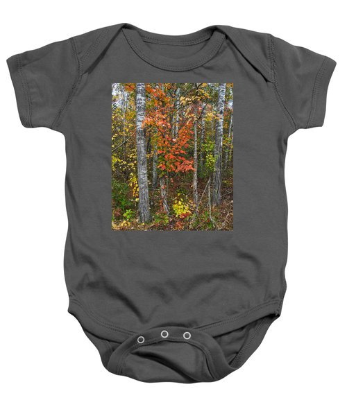 Fall Color At Gladwin 4543 Baby Onesie