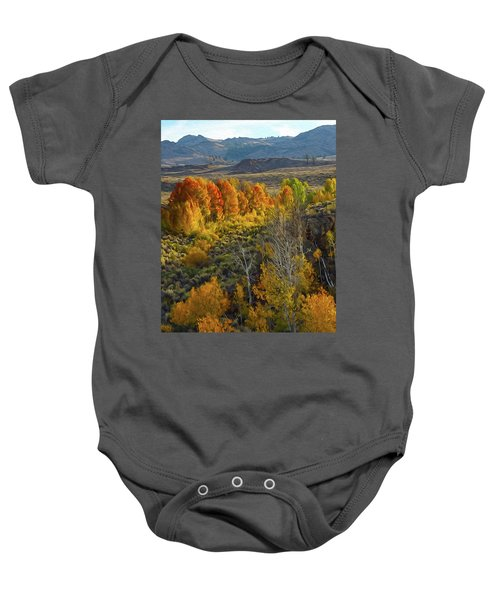 Fall Colors At Aspen Canyon Baby Onesie